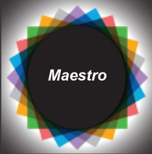 Maestro DG 16 Logo